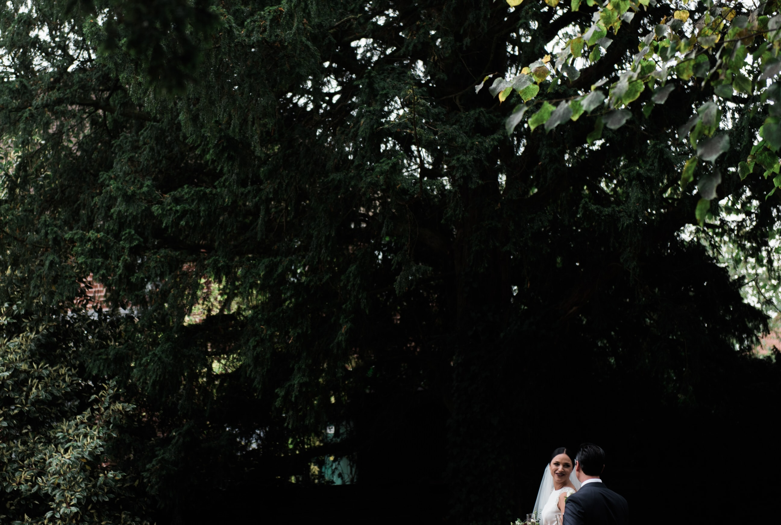 Bride and groom talking under trees