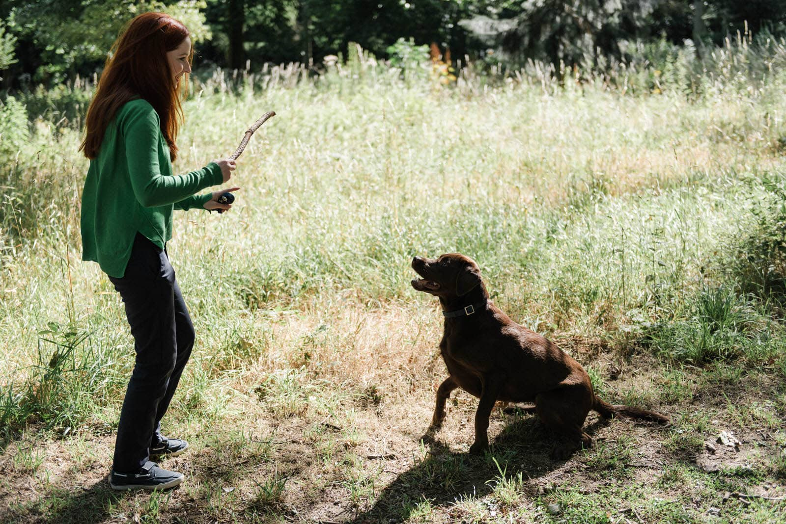 Female redhead getting the dog to sit for a stick on an engagement shoot