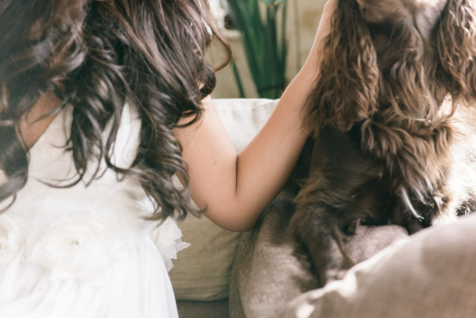 Documentary Wedding Photography Yorkshire - Bride and her dog
