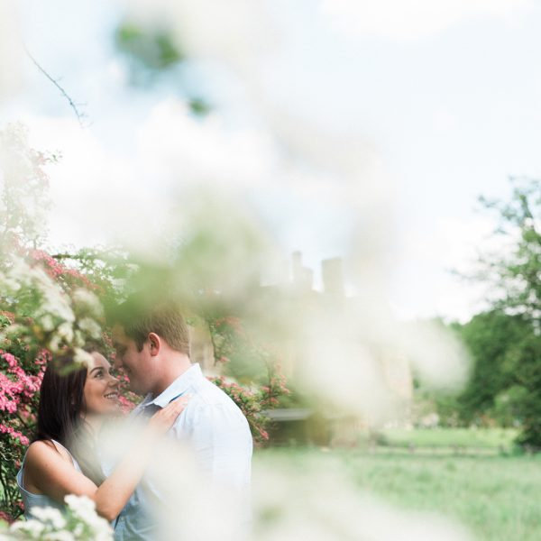 Wedding photograph of couple in a cherry blossom tree at Botanical Gardens Sheffield