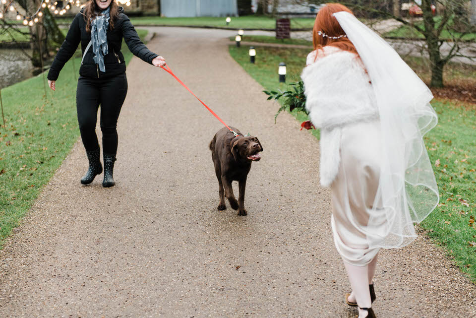 bride walking excited to see dog